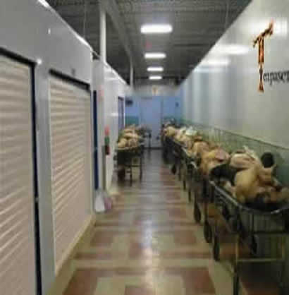 Tenpasenta self storage units with dead bodies on trolley